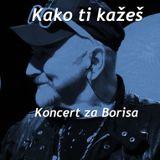 Kako ti kažeš: Koncert za Borisa
