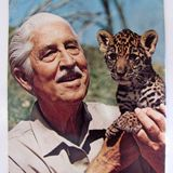 "Galaxy Moonbeam Night Site - Show 199: Mutual of Omaha's ""Wild Kingdom""; Remembering Art Astor"