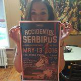 Wbjb-Accidental_Seabirds_08May2016