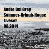 raus ins house sommermixset 08.2014.mp3(155.0MB