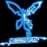 Electro Silver_CYBERNATURAL_DJ set live from club TVRDJAVA(INTELLIGENT MECHANICAL BEING)