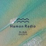 #47 Dr.Rob w/ Hamon Radio @GINfest Tokyo 2018, Tennoz Harbor Market