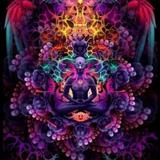 Psychedelic Journeys XIV