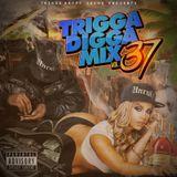 Trigga Happy Sound - Trigga Digga Mix Vol. 37 (Mix)(October, 2015)
