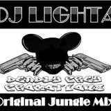 Old Skool Jungle Mix. I done this a while back. You will find *rare* jungle tracks on this mix.
