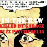 In The Raw- Killed By Garage Fuzz Psychedelia