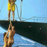 Skipper Unlimited - Persistence over Genius