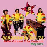 Señor Coconut Y Su Conjunto Megamix