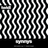 SynnyS // Twidl Sessions // August '17 // Club Innocent