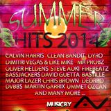 Summer Hits 2014 by Daven Ray