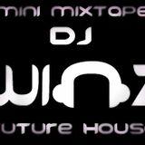 Mini Mixtape [FUTURE HOUSE] ^_^