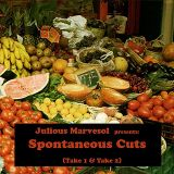 (EGAMIMIX002) VA - Julious Marvesol presents...Spontaneous Cuts (Take 2), 2010