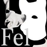 FEL / with Postviolet