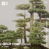 Perfect Sound Forever w/ Zomes - 25th September 2018