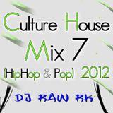 DJ RAW RK_Culture House Mix 7 (Hip-Hop & Pop) 2012