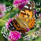 Deep Soulful Deep Jackin Deep House