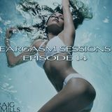Eargasm Sessions - Episode 14 Mixed By Craig Mills