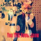 VA - You Will Never Know, Mixed by Chris from HML (2013)