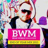 Bear World Magazine 2013 Year Mix