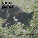 Minimix Punch para a Primavera