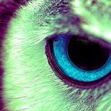 Darius Aleksandar - Midnight Owl Mix - 05:16:14