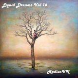 Liquid Dreams Volume 16