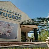 Les Coulisses de l'été - Atelier restauration au Musée de l'Aventure Peugeot