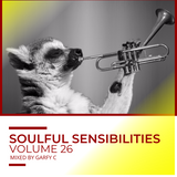 Soulful Sensibilities Vol. 26