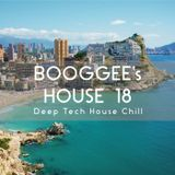 Booggee's House 18