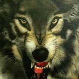 le cri des loups