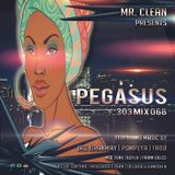 Pegasus 303 Mix 068 with Mr. Clean
