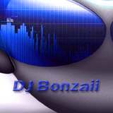 DJ Bonzaii - Fucking Hardstyle Mood Part 2