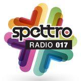 Spettro Radio 017