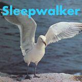 Sleepwalker April 30, 2020 - Anchors And