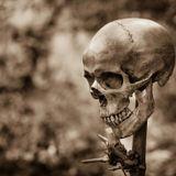 Digital Macabre Vol #13: Goth industrial Top 10   October 20th 2018-November 10th 2018