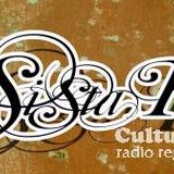 Back in March 2010 - Radio Show Cultural Vibes W Sista Ka Strictly Vynil