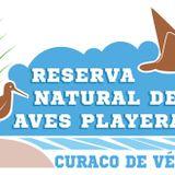 "Marea Alta, Cap.11 ""Curaco, Reserva Natural de Aves Playeras"" (programa completo)"