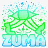 LLL for Zuma 2019