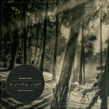 A Guiding Light By Michael Gaida [Ambient | March 2015]