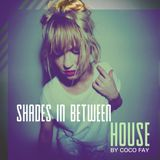 Shades in Between HOUSE #001 by Coco Fay