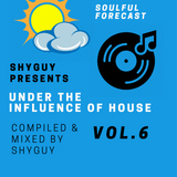Under the Influence of House Vol.6: Soulful Forecast