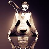 Experiment 'CRO' (Drölftausend Pandas)