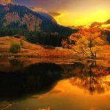 ToM!s 'autumn gold' FreedoM & Happ!nesS M!x 010 by djtomi