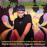 The Regime (Triplag Music 10 Year Anniversary DJ Mix)