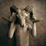 Metamorphosis...