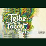 CJ Art @ Tribe In The Forest 2019 (Chill-Groove Stage) [06-09-2019]