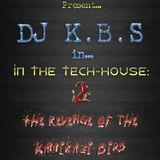 In the Tech House 2 - The Revenge of the Kamikaze Bird Squad