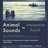 Animal Sounds #6: Interspecies Sound