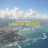 Lab Of Senses: Ep. 1