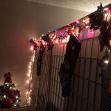 House of Christmas 4